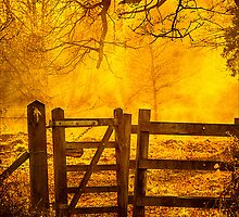 Gate To Nowhere by mlphoto
