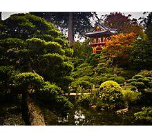 Japanese Garden San Francisco Photographic Print
