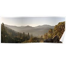 Yosemite National Park Forest Poster