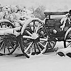 Wagon in Winter  -  B&amp;W by John Butler