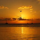 Belizean Sunset by AndyEllis82