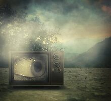 As seen on tv by Taylan Soyturk