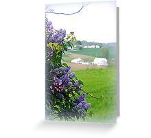 The Farm through Lilacs and Red Bud Trees Greeting Card