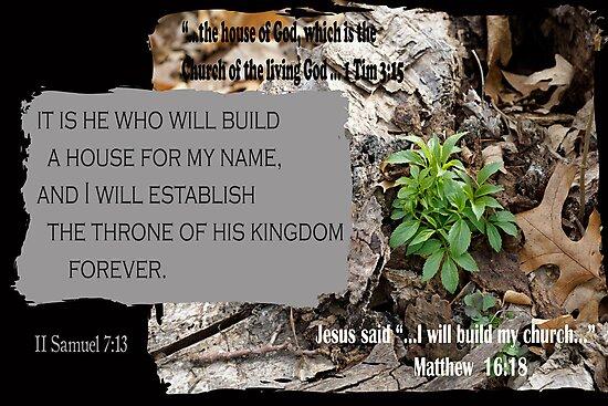 The House of God ~ 2 Samuel 7:13 by Robin Clifton