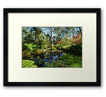 At the bottom of the Garden, Mt Wilson Framed Print