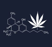 Marijuana/cannabis THC molecule shirt by flashman