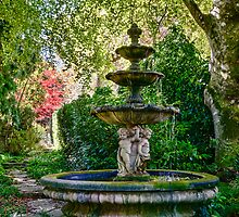 Hidden Fountain, Mt Wilson by Chris  Randall