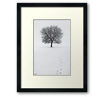 Solitude Footprints Framed Print