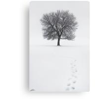 Solitude Footprints Canvas Print