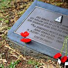 Five Poppies by WayneG57