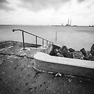 Bull Island, Ireland by Alessio Michelini