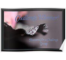 Banner - FFAC - Challenge Winner Poster