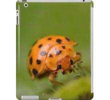Mexican Bean Beetle (Epilachna varivestis) iPad Case/Skin
