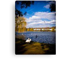Roath Park Lake Cardiff Wales Canvas Print