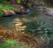 Winburndale Rivulet... by vilaro Images