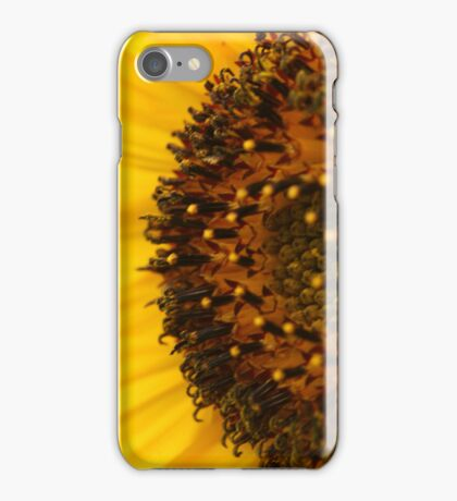 Sunflower - Macro iPhone Case/Skin