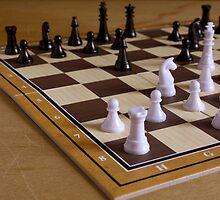 chess by slavikostadinov