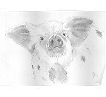 Piglet Drawing Poster