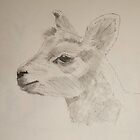 Lamb Drawing by MikeJory
