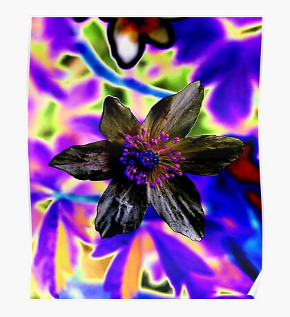 Psychedelic flower Poster