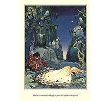 Old French Fairy Tales: The Night in the Forest Photographic Print