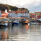 Boats in the Lower Harbour, Whitby by Rod Johnson