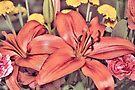Lilies  by AuntDot