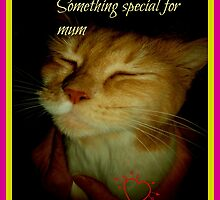 Something Special for mum by DMEIERS