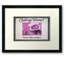 Banner - PNAO - Challenge Winner Framed Print
