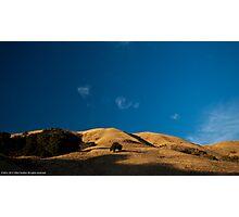 The Boccardo Trail Photographic Print