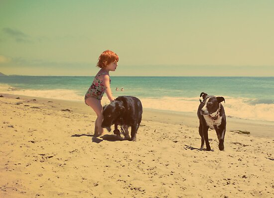 Good Dogs by Laurie Search