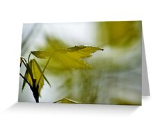 Springtime Leaves I Greeting Card