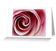 Swirl of Pink Rose Greeting Card