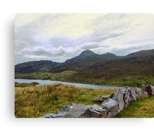 Harris  Canvas Print