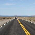 Road to Pyramid Lake Nevada,USA by Anthony & Nancy  Leake