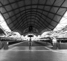 Southern Cross train Station by nicomelbourne