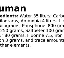 The average ingredients of an adult human body by Septym