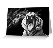 Don't Challenge Me!! Greeting Card