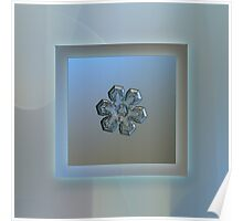 Massive silver, real snowflake macro photo Poster