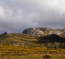 Cradle Valley Boardwalk, Tasmania by Elaine Teague