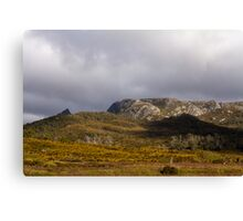 Cradle Valley Boardwalk, Tasmania Canvas Print