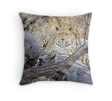 The leopards stare Throw Pillow