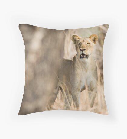 Lion watching Throw Pillow