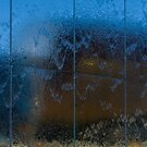 Wet Reflections by mlphoto