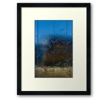 Wet Reflections Framed Print