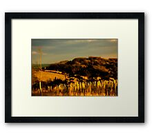Golden Vista Framed Print