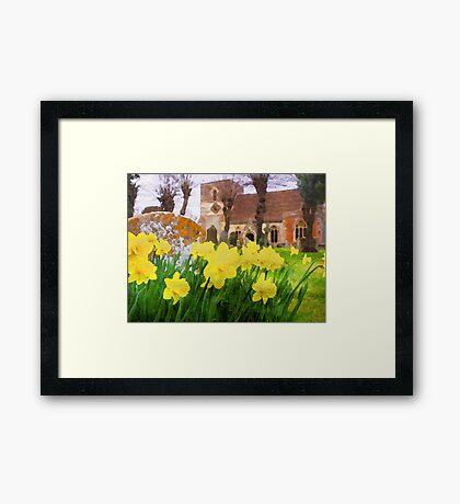 Spring Daffodils England Framed Print