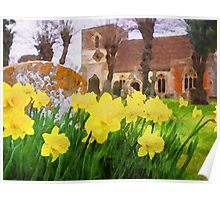 Spring Daffodils England Poster