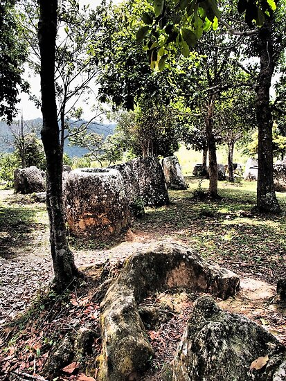 Plain of jars by Lois Romer