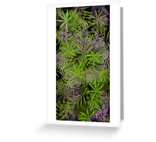 Purple & Green Flowers Greeting Card